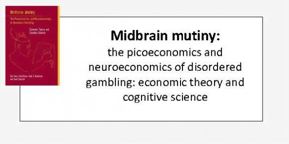 Midbrain mutiny - the picoeconomics and neuroeconomics of disordered gambling - economic theory and cognitive science_Page_1